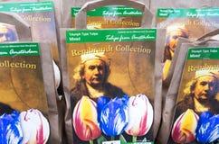 L'ampoule met en sac avec le portrait du peintre Rembrandt van Rijn Image stock