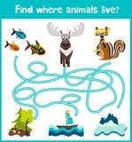 L'amusement et le jeu coloré de puzzle pour le développement d'enfants trouvent où des cerfs communs, une tamia rayée et un poiss Photographie stock libre de droits