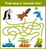 L'amusement et le jeu coloré de puzzle pour le développement d'enfants trouvent où des cerfs communs, une tamia rayée et un poiss Images libres de droits