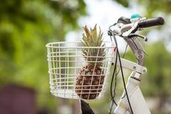L'ananas nel verde del canestro della bici ha offuscato il bokeh del fondo fotografie stock