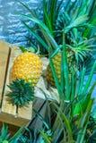 L'ananas, quello è disposto in casse di legno, dolce fresco del gusto immagine stock