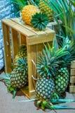 L'ananas, quello è disposto in casse di legno, dolce fresco del gusto immagini stock libere da diritti
