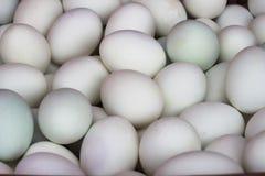 L'anatra eggs il fondo, uova salate Immagine Stock Libera da Diritti