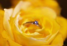 L'anello di Diamant sopra il colore giallo è aumentato Fotografia Stock Libera da Diritti