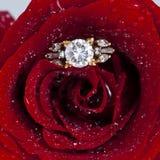 L'anello di diamante dorato ed è aumentato Fotografia Stock
