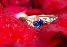 L'anello ed il colore rosso di oro sono aumentato. Immagine Stock Libera da Diritti