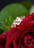 L'anello ed il colore rosso di oro sono aumentato. immagini stock libere da diritti