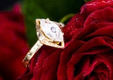 L'anello ed il colore rosso di oro sono aumentato. Immagini Stock