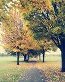 L'Angleterre, champ de ville de parc de Donny Images stock