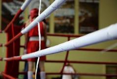L'angolo del pugile in rosso Fotografia Stock Libera da Diritti