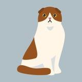 L'animale adorabile lanuginoso rosso bianco del fumetto dell'animale domestico sveglio britannico dello shorthair della razza del royalty illustrazione gratis