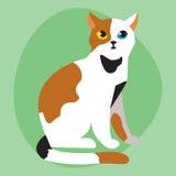 L'animale adorabile rosso nero bianco lanuginoso del fumetto del ritratto sveglio dell'animale domestico della razza del gatto ed illustrazione vettoriale