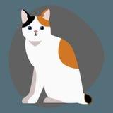L'animale adorabile rosso nero bianco lanuginoso del fumetto del ritratto sveglio dell'animale domestico della razza del gatto ed royalty illustrazione gratis