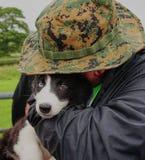 L'animalista abbraccia il bello cucciolo del cane da pastore - Galles Regno Unito immagini stock libere da diritti