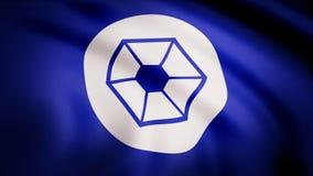 L'animation du drapeau du Confederacy des systèmes indépendants Le thème de Guerres des Étoiles Utilisation d'éditorial seulement illustration de vecteur