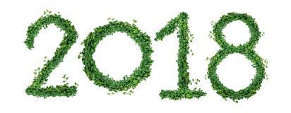 L'année 2018 avec le nombre de vert en forme de coeur laisse la vigne, lotisseur Photographie stock libre de droits