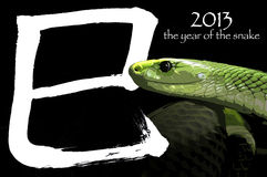2013 l'année du serpent Photos stock