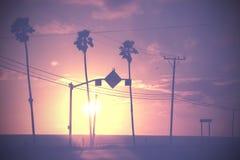 L'annata ha attenuato ancora l'immagine del tramonto delle palme e dei pali sulla via fotografie stock libere da diritti