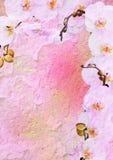 L'annata ha designato il blocco per grafici floreale - orchidea Fotografia Stock