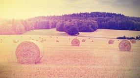 L'annata tonificata ha raccolto il campo con le balle di fieno al tramonto Fotografie Stock
