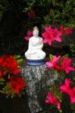 L'anniversaire de Bouddha Image libre de droits