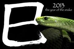 2013 l'anno del serpente Fotografie Stock