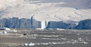 l'Antarctique Images libres de droits