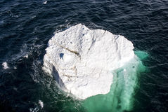 L'Antarctique - morceau de glace de flottement Image libre de droits