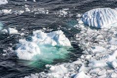 L'Antarctique - morceaux de glace de flottement Photographie stock libre de droits