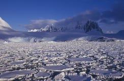 L'Antartide Immagini Stock Libere da Diritti