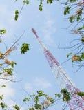 L'antenna Fotografia Stock Libera da Diritti
