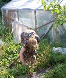 L'anziana lavora in giardino Fotografia Stock