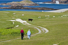 L'anziano fa una passeggiata Immagine Stock
