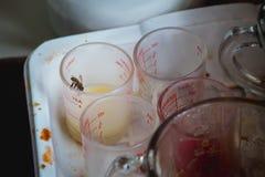 L'ape nella grande città mangia il nettare ed il latte condensato al bordo della tazza di misurazione per caffè Incertezza nella  fotografia stock