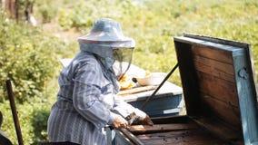 L'apicoltore controlla l'alveare video d archivio