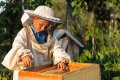 L'apiculteur de petit garçon travaille à un rucher à la ruche Photographie stock