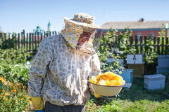 L'apiculteur est miel de prises en nids d'abeilles sur le rucher Apiculteur sur le rucher Image stock
