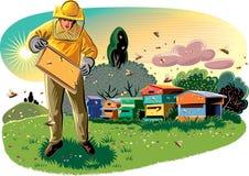 L'apiculteur prend soin de sa ruche photographie stock libre de droits