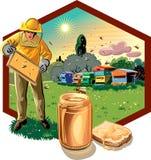 L'apiculteur prend soin de sa ruche photos stock