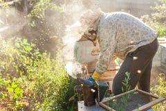 L'apiculteur travaille avec des abeilles et des ruches sur le rucher Apiculteur sur le rucher Image stock