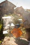 L'apiculteur travaille avec des abeilles et des ruches sur le rucher Apiculteur sur le rucher Photographie stock libre de droits