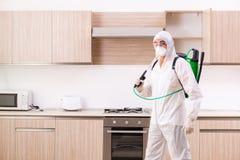 L'appaltatore professionale che fa controllo dei parassiti alla cucina immagine stock