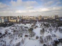 L'appareil de photographie aérienne capture les pins couverts par neige en Victory Park Odessa Image libre de droits