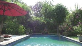 L'appareil-photo d?place sur un jardin tropical avec la piscine en longueur les arbres de floraison bali l'indon?sie banque de vidéos