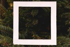 L'appartement créatif étendent le cadre de place blanche sur des branches en bois de pin, concept d'arbre de christmass avec l'es image stock