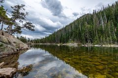 L'appel de Rocky Mountain National Park image libre de droits