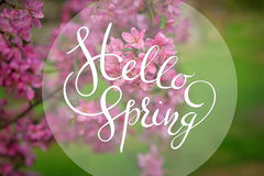 L'Apple-arbre de floraison sur le fond de l'herbe verte avec des lettres bonjour sprintent Photographie stock libre de droits