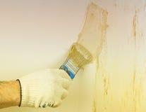 L'application de la peinture décorative sur le mur au soleil Photographie stock