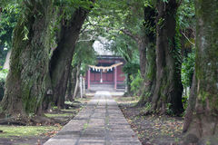L'approccio anteriore allo shirine Fotografie Stock