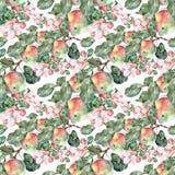 L'aquarelle fleurit Apple avec des fruits Modèle sans couture d'ouvrage sur un fond blanc Illustration de Vecteur